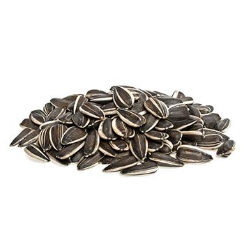 vQm Sunflower seeds
